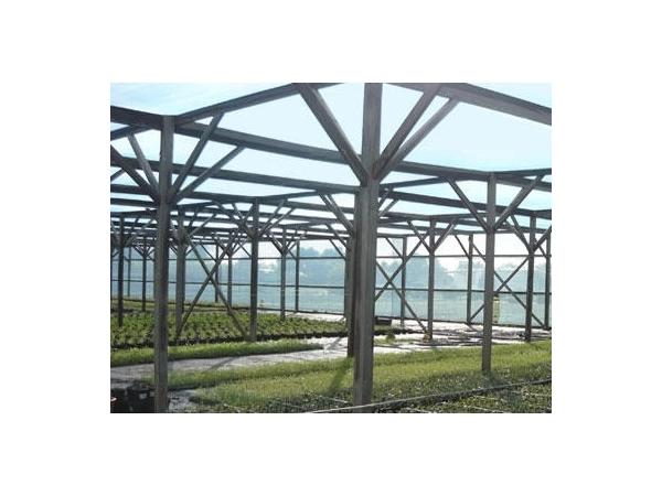 Agri / Horticulture / Aquaculture