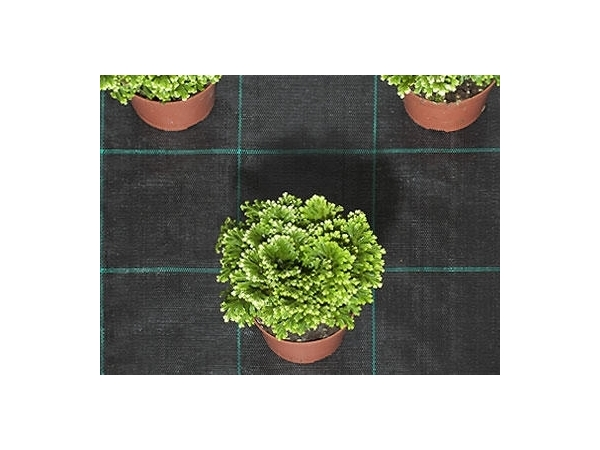 Groundcover Fabric